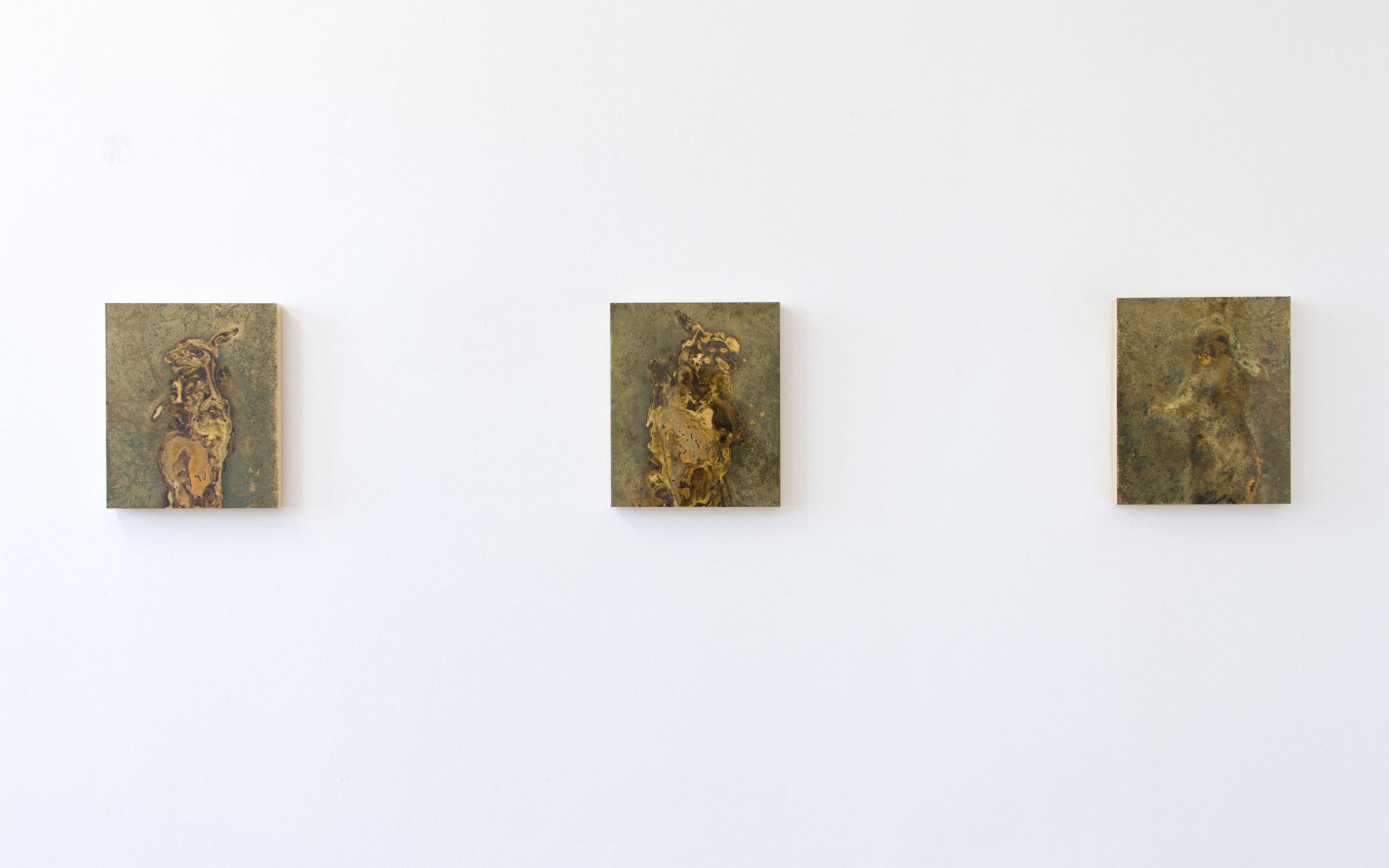 Toni R Toivonen Portrait Of A Hare 12 13 14 15